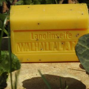 Walhalla-Lamm Lanolinseife Grapefruit-Mohn